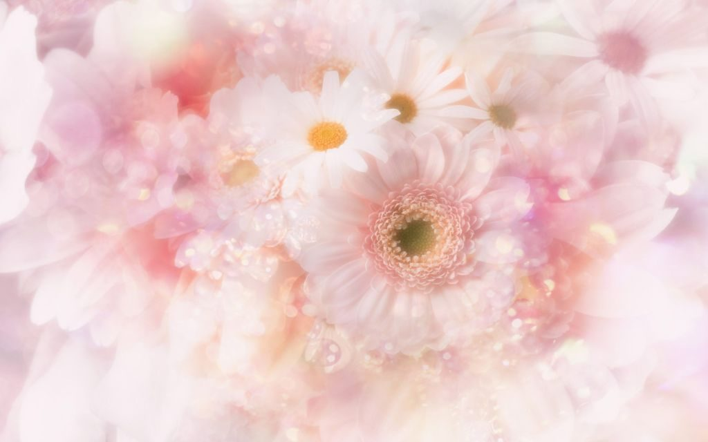 Gorgeous Floral HD Wallpaper + New Themes!