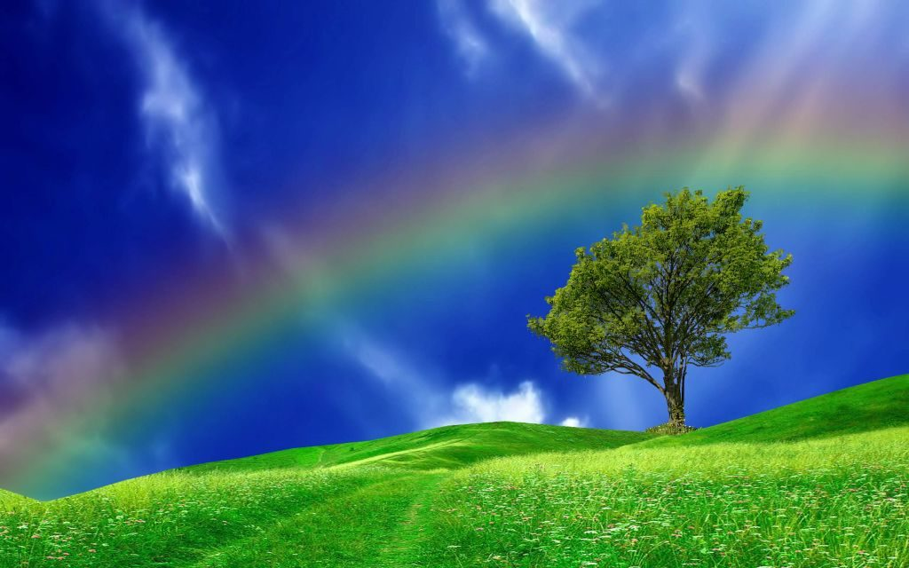 Perfect Rainbow 4K Wallpaper – Enjoy Latest HD Themes