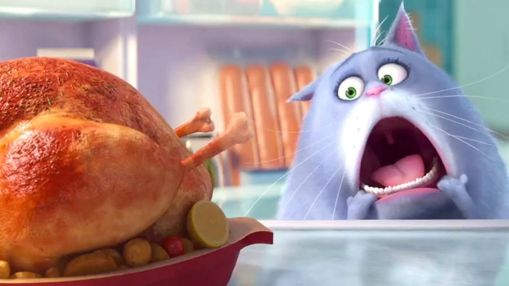 The Secret Life of Pets Wallpapers – New Trailer is OUT!