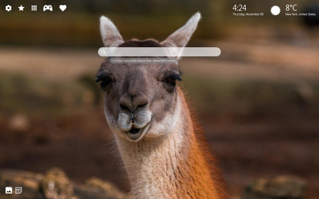 Best Funny Llama Wallpapers