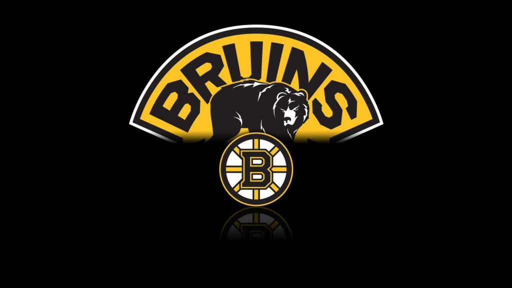 Boston Bruins Amazing Facts!